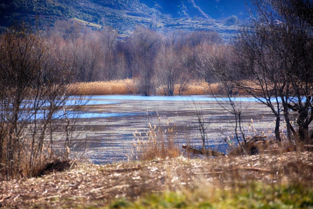 LG-SB Photographie @photographeamontpellier  nature et paysage Lac du Salagou 3