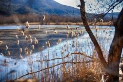 LG-SB Photographie @photographeamontpellier  nature et paysage Lac du Salagou