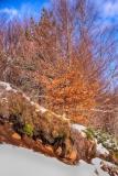 LG-SB Photographie @photographeamontpellier  nature et paysage paysage enneigé Ardèche 2