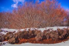 LG-SB Photographie @photographeamontpellier  nature et paysage paysage enneigé Ardèche 3